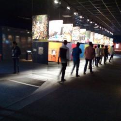 Nobel Prize Exhibition
